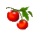 tomatoes-wo-logo